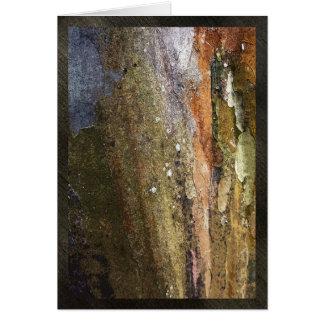 "Colorful tree bark, 5""x7"", greeting card, blank card"