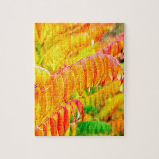 Colorful tree leaves in autumn season outdoors jigsaw puzzle