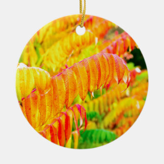 Colorful tree leaves in autumn season outdoors round ceramic decoration