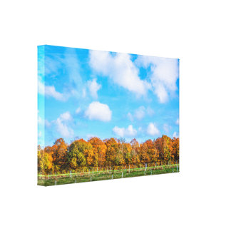 Colorful trees in an autumn landscape canvas print
