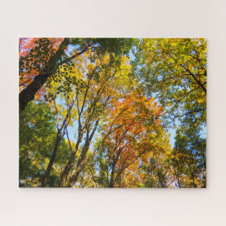 Colorful Treetops Jigsaw Puzzle