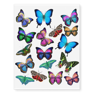 Colorful Tropical Butterflies Temporary Tattoo