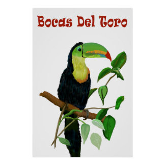 Colorful & Tropical Panamas Toucan Poster. Poster