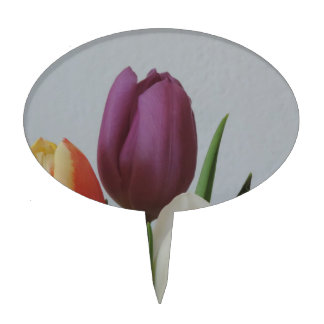 Colorful Tulip spring flowers bouquet Cake Toppers