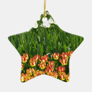Colorful Tulips Ornaments
