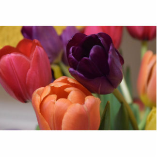 Colorful Tulips Standing Photo Sculpture