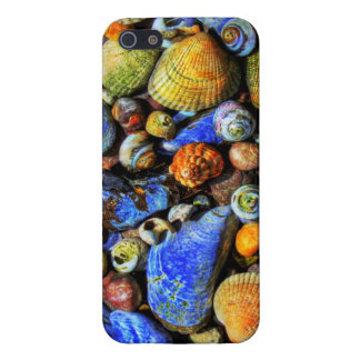 Colorful Various Sea Shells iPhone 5 Cover