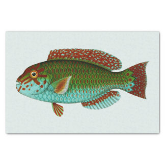 Colorful Vintage Fish Tissue Paper