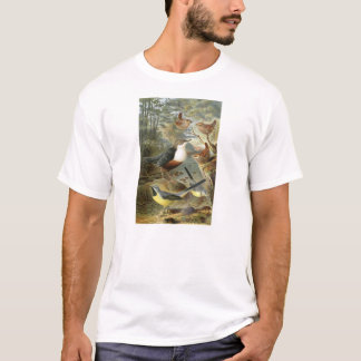 Colorful vintage illustration of birds shirt