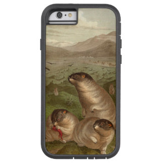 Colorful vintage marmot illustration case