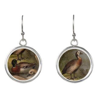 Colorful vintage painting of ducks earrings