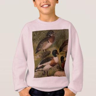 Colorful vintage painting of ducks sweatshirt