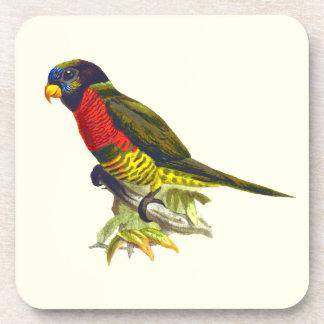 Colorful vintage parrot illustration coaster