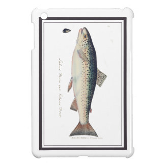 Colorful vintage salmon illustration iPad mini covers