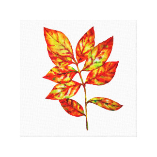 Colorful watercolor  leaf stretched canvas print