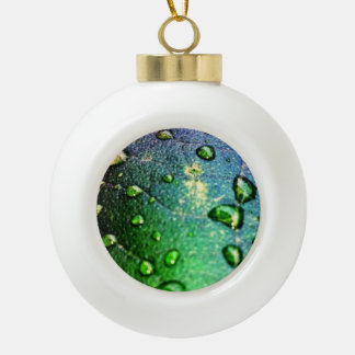 Colorful Waterdrops on Leaf Ornaments