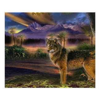 Colorful wolf in the forest photograph