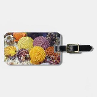Colorful Worldwide Seashells Luggage Tag