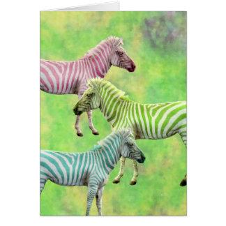 Colorful Zebras Card