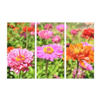 Colorful Zinnia Garden Canvas Print