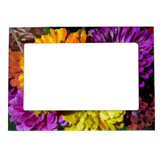 Colorful Zinnia Picture Frame