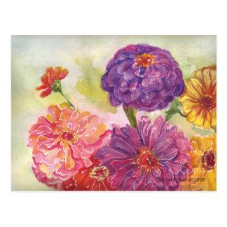 Colorful Zinnias Postcard