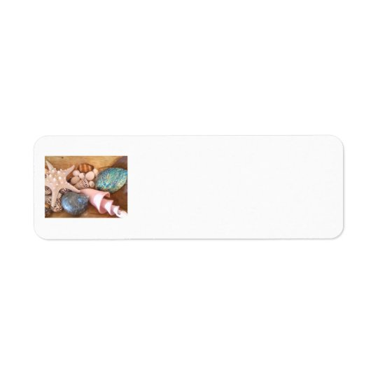 colorfull multiple sea shell arrangement return address label
