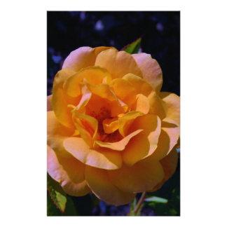 Colorized Rose Custom Stationery