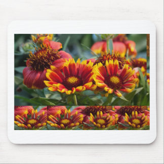 COLORMANIA Rich Energy Flower Show: Blessings Mousepad