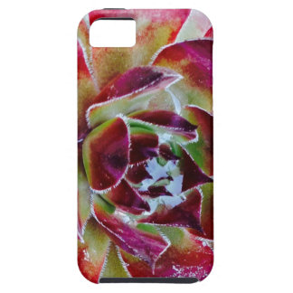 Colors and forms of nature iPhone 5 cover