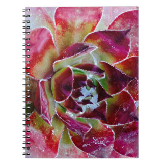 Colors and forms of nature notebook