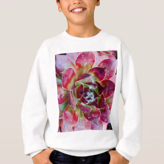 Colors and forms of nature sweatshirt