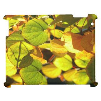 Colors of Autumn (Herbstblätter) iPad Cases