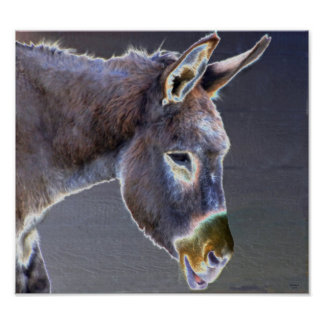 Colors of  Light Donkey - Horse & Animal Rescue Poster