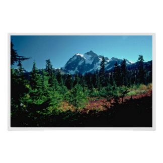 Colors Of Nature At Heights Poster