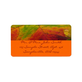 Colors of the Maple Leaf Autumn Nature Photography Address Label