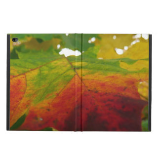 Colors of the Maple Leaf Autumn Nature Photography Powis iPad Air 2 Case