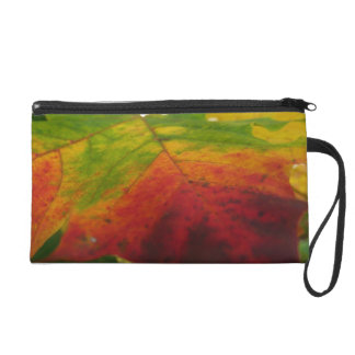 Colors of the Maple Leaf Autumn Nature Photography Wristlet