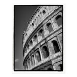 Colosseum Postcard Post Card
