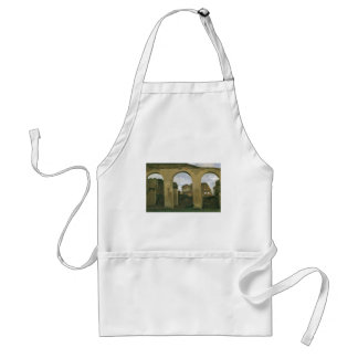Colosseum Seen through the Arcades, Rome, Italy Adult Apron