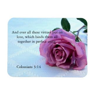 Colossians 3:14 scripture rose magnet