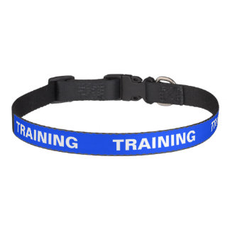 Colour Coded Dog Temperament Collar - Training