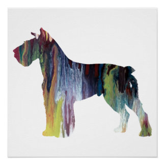Colourful abstract Schnauzer silhouette