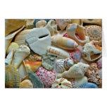 Colourful Beach Shells Blank Note Card