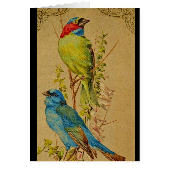Colourful Birds Card