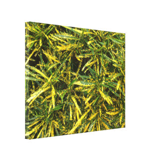 Colourful Croton leaves canvas print