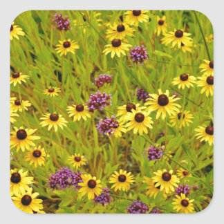 Colourful echinacea flower garden print square sticker