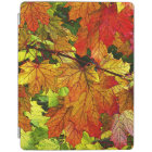 Colourful Fall Foliage iPad Cover