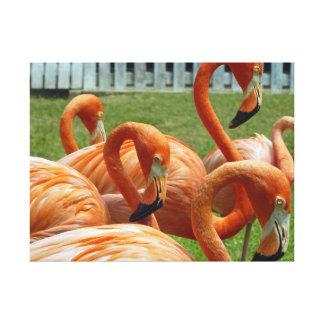 Colourful flamingos canvas print