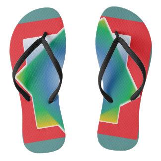 Colourful Flip Flops